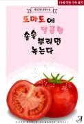 토마토에 달콤함 솔솔 뿌리면... 녹는다